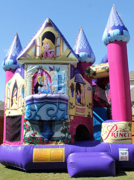 5 in 1 Disney Princess Clubhouse
