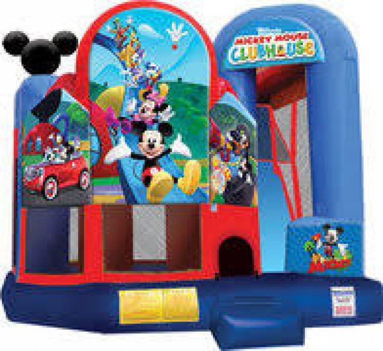 Mickey Backyard Combo (Wet or Dry)